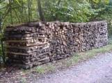Die Holzernte läuft derzeit in vielen Wäldern des Rhein-Neckar-Kreises
