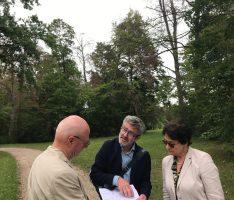 Sonderprogramm für Klimafolgenanpassung im Schwetzinger Schlossgarten kommt